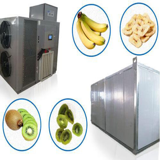 Fruit dehydrator and vegetable Drying Room