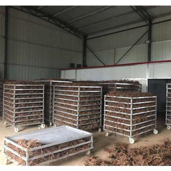 commercial hemp drying