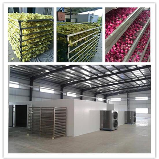hemp flower drying system